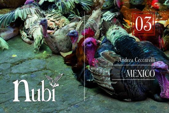 #03 Mexico – Andrea Ceccarelli